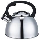 907-043 Чайник со свистком 2.5 л